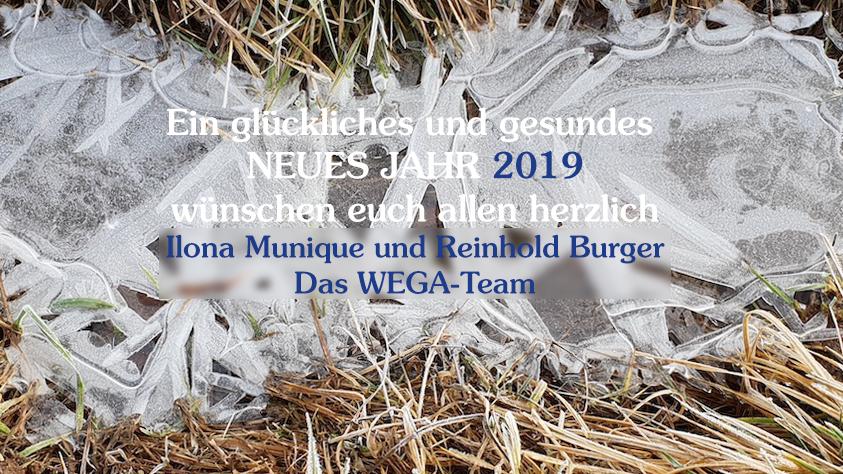 Neujahresgrüße 2019 WEGA-Team