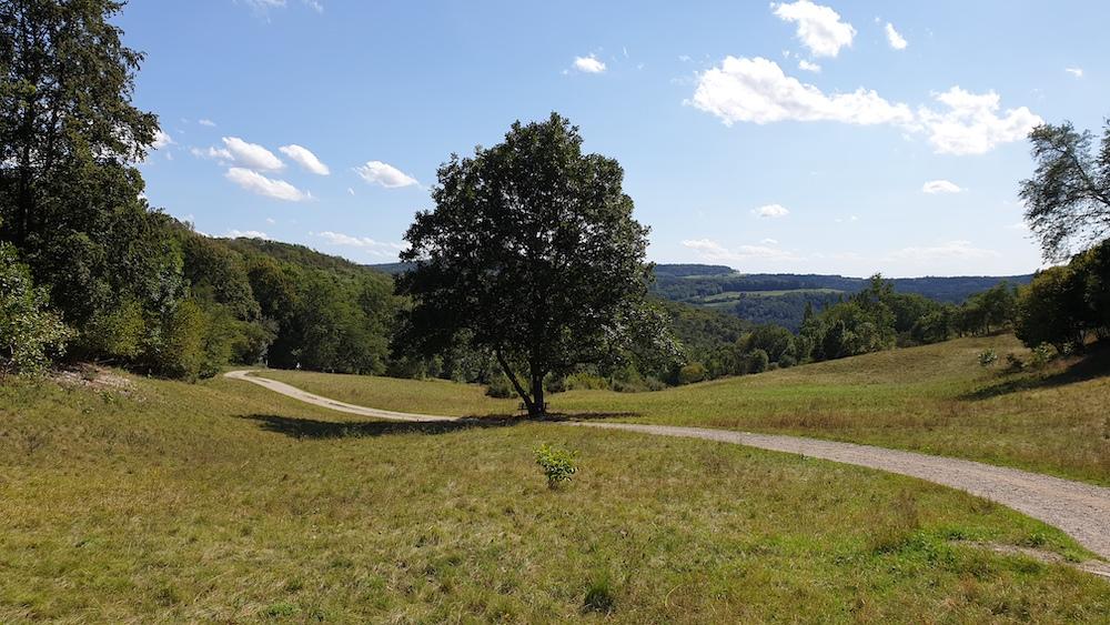 Weg zum Staffelberg